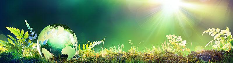 Pixelwerk - Umweltschutz im Webdesign